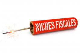 Illustration niche fiscale